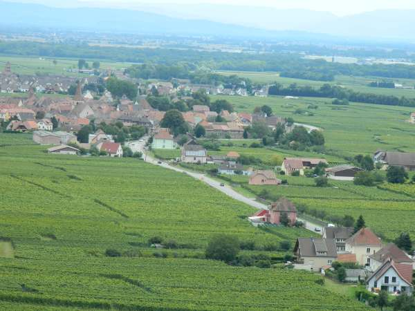 Alsace countryside.