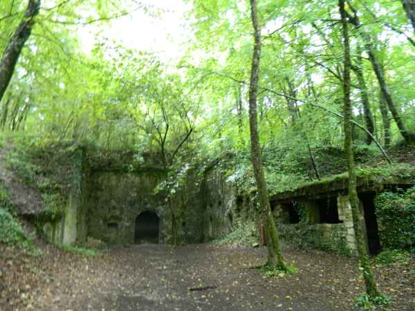 Old World War I fort built into the side of a hill, now over grown and empty,