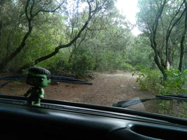 Our Lisbon campground was right off the freeway, the GPS took me this way into a dead end.